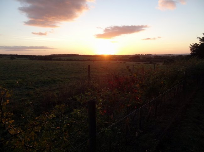 Sunset Over Watlington