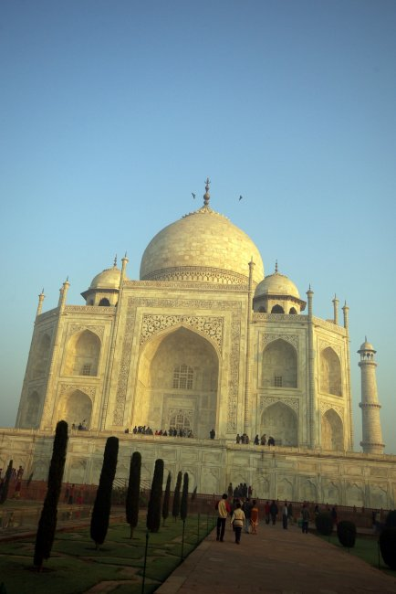 Standard Taj Mahal Photo (1)